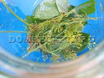Укладываем листья и часть зелени в банки