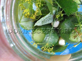 Выкладываем небольшие огурцы, чеснок и зелень